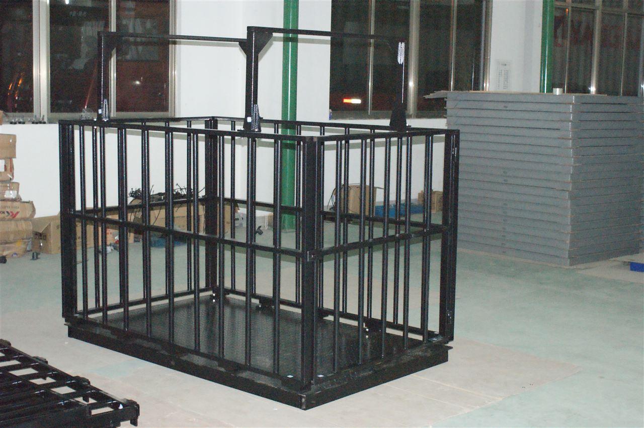 供应亚津碳钢牲畜秤 大量程动物专用地磅秤2